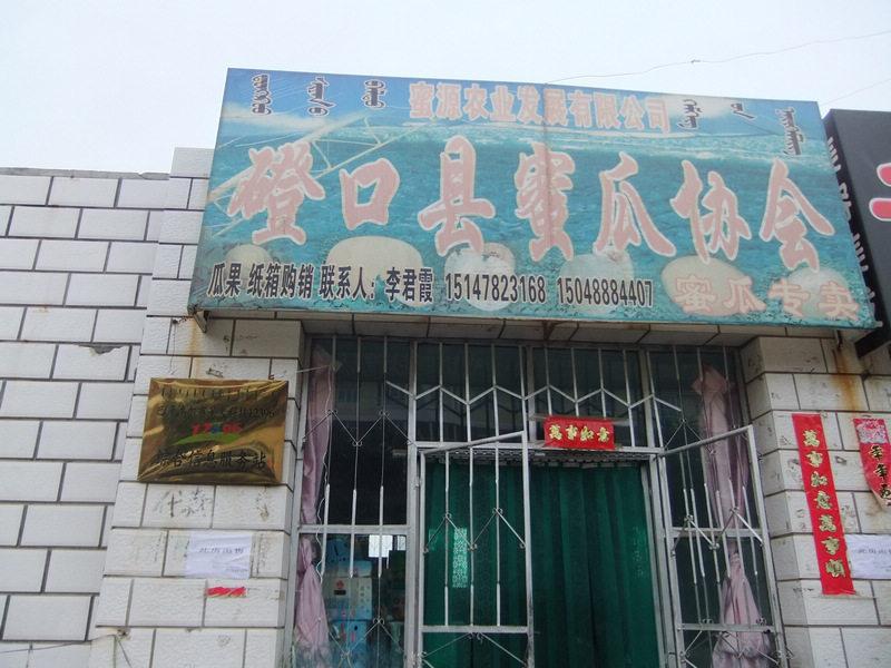 磴口县蜜瓜协会农牧业科技服务站