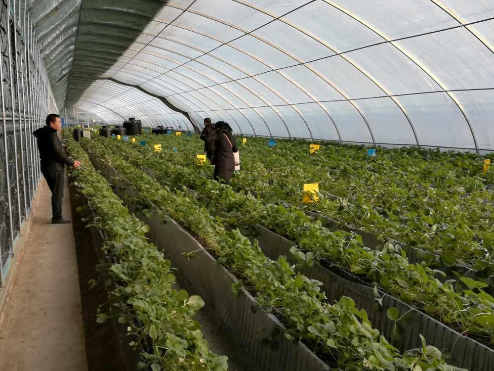 固阳农业高新园区应用新技术