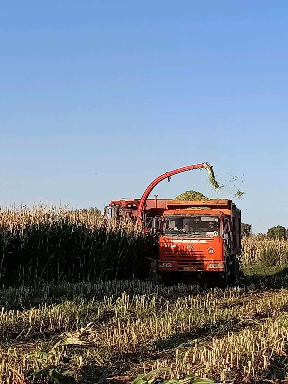 2019政府工作报告:推荐进农业生产全程机械化