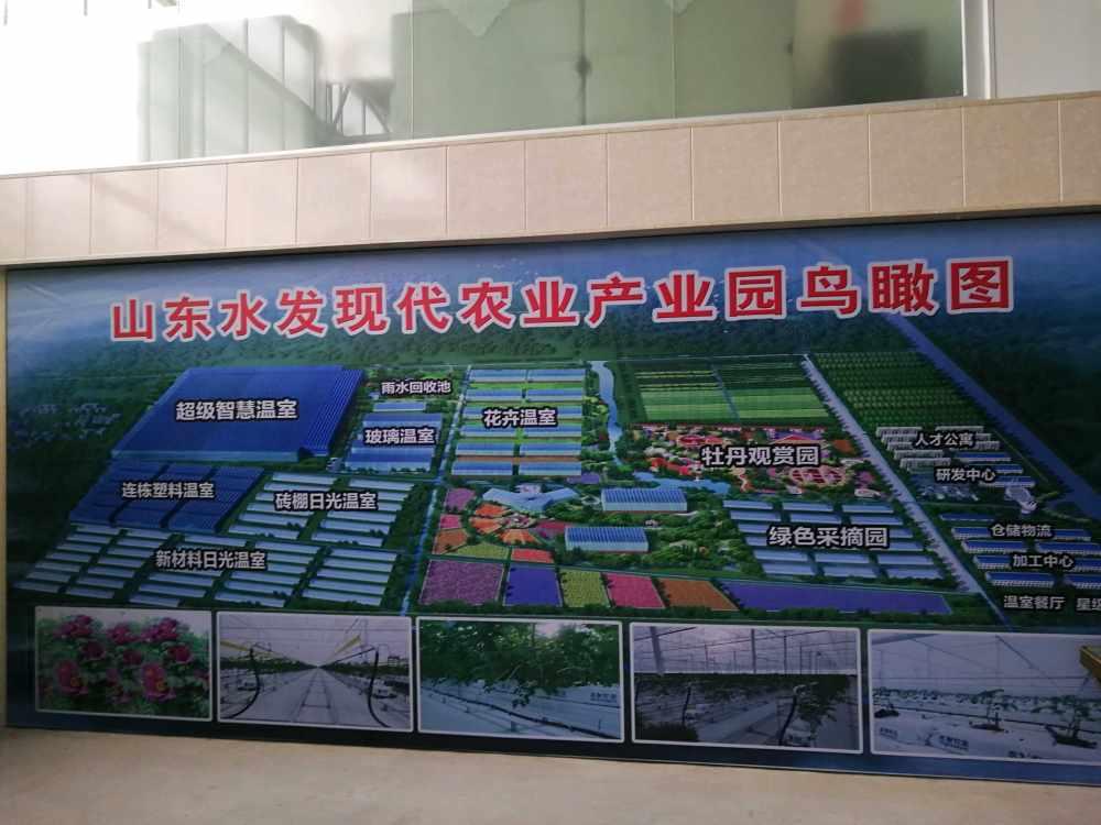 赴山东考察农业高效节水项目