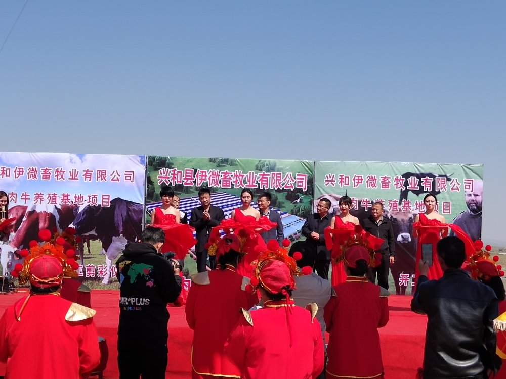 伊微公司三千头肉牛养殖项目举行开工奠基仪式