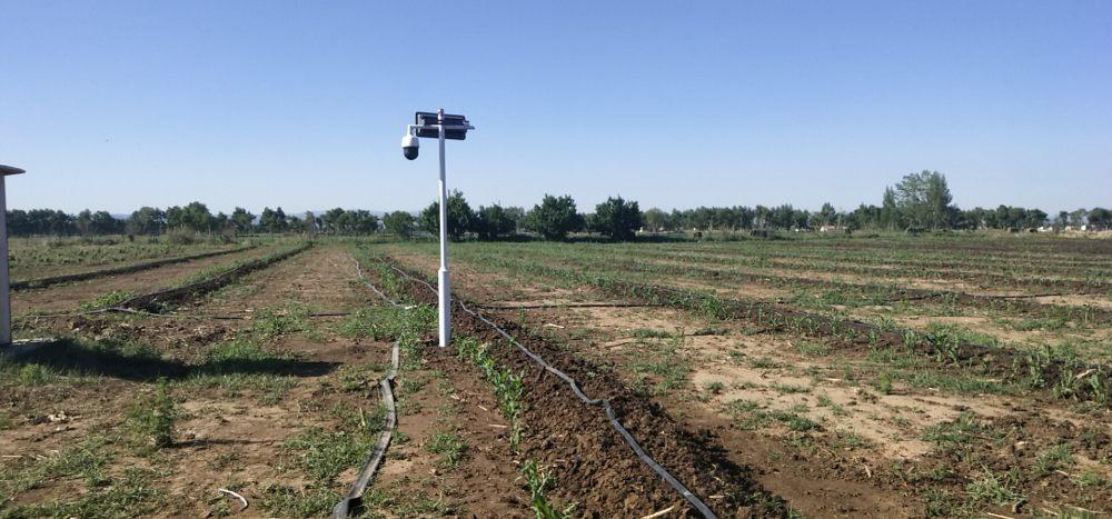 内蒙古乌兰察布市凉城县神龙蚯蚓养殖有限责任公司