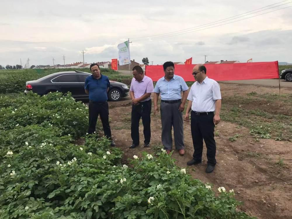 张汝江副市长深入察右前旗 调研科技特派员工作
