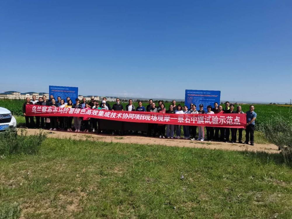 乌兰察布市绿色高效集成技术在察右中旗展开示范点。